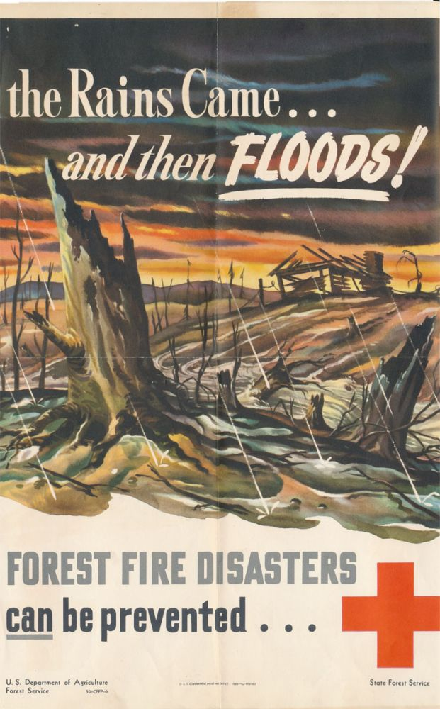 the Rains Came... and then FLOODS! FOREST FIRE DISASTERS can be prevented. FOREST SERVICE -- POSTER.