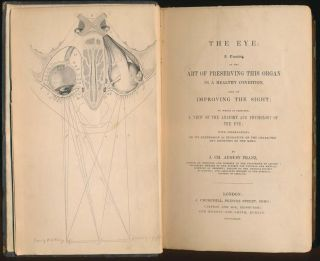 The Eye: A Treatise on the Art of Preserving This Organ in a Healthy Condition, and of Improving the Sight; to Which Is Prefixed, a View of the Anatomy as Indicative of the Character and Emotions of the Mind.